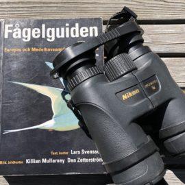 Med en bra fågelbok och kikare kommer du långt.